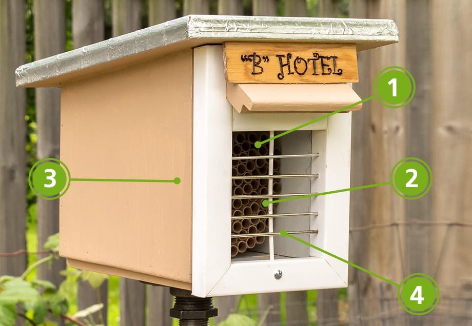 Biene Aufpäppeln