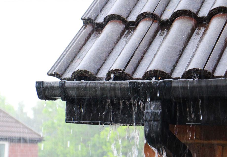 Bekannt Der Regendieb: Regenwasser sammeln | Stadtwerke Düsseldorf LH33